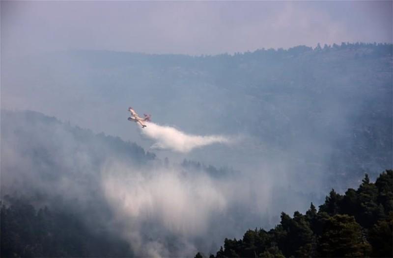 Πυροσβεστική για τη φωτιά στην Εύβοια: Υπάρχουν σαφείς ενδείξεις εμπρησμού!