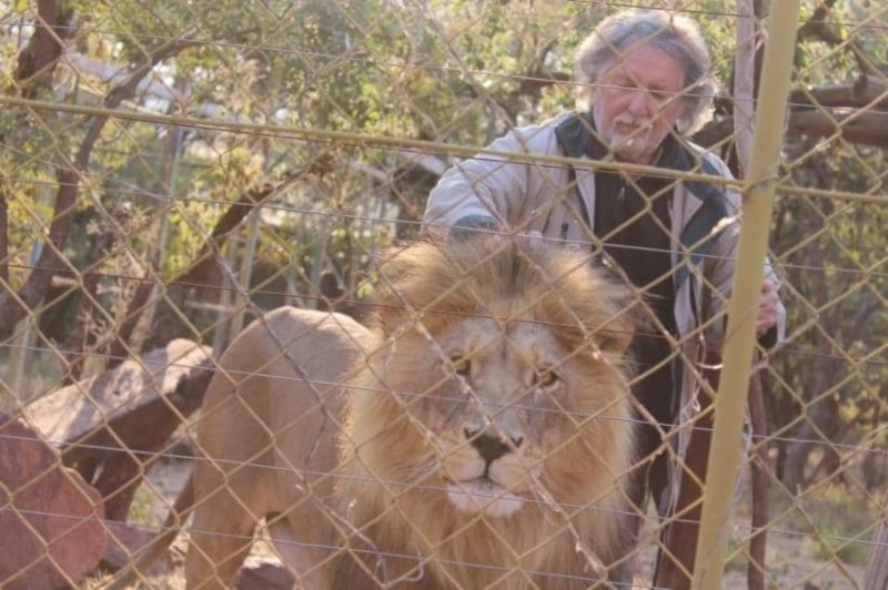 Ανατριχιαστικό: Τον έφαγαν ζωντανό τα λιοντάρια που είχε αιχμάλωτα!