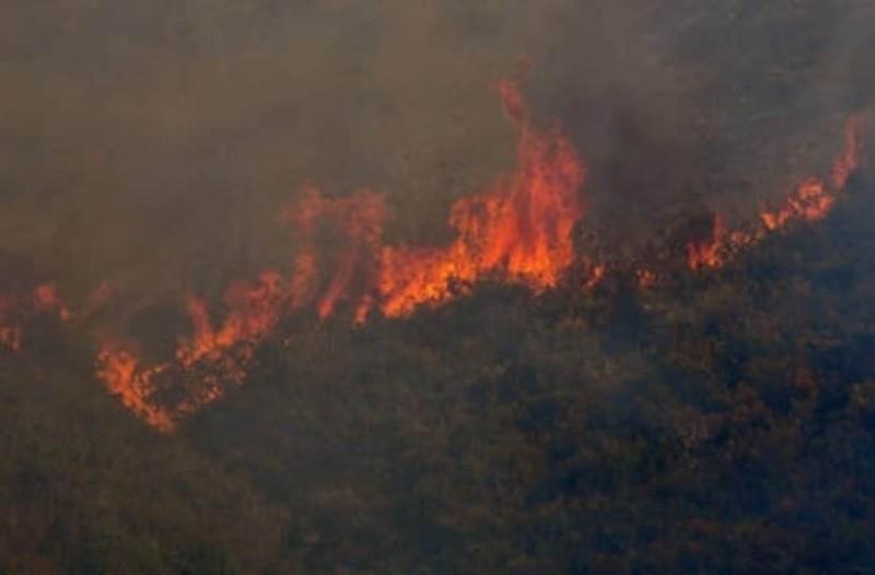 Μεγάλη φωτιά στην Εύβοια: Η οσμή έφτασε μέχρι την Αθήνα!