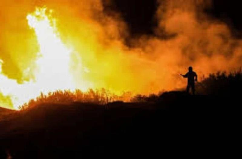 Δύσκολη νύχτα για την Εύβοια: Η μάχη με τις φλόγες συνεχίζεται!