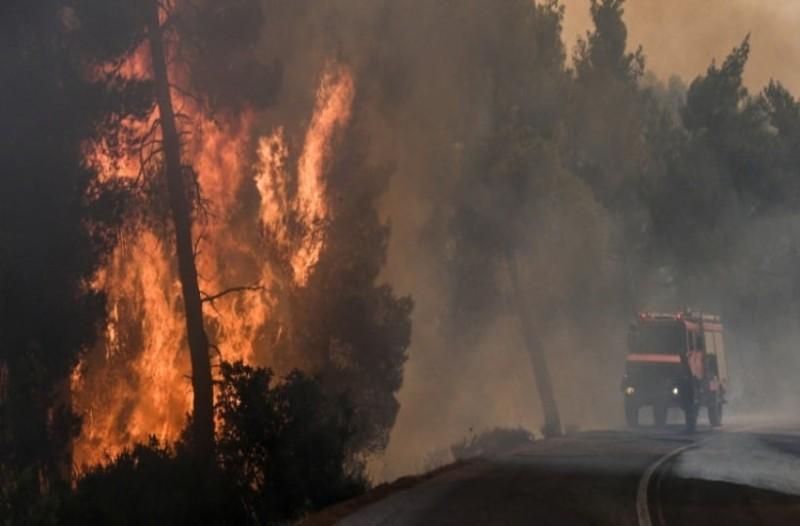 Σοκαριστικό βίντεο  από τη μεγάλη καταστροφική φωτιά στο δάσος Natura στην Εύβοια!