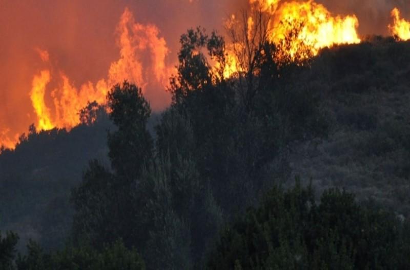 Φωτιά στην Εύβοια: 64χρονος αναζητείται από την αστυνομία για την πυρκαγιά!