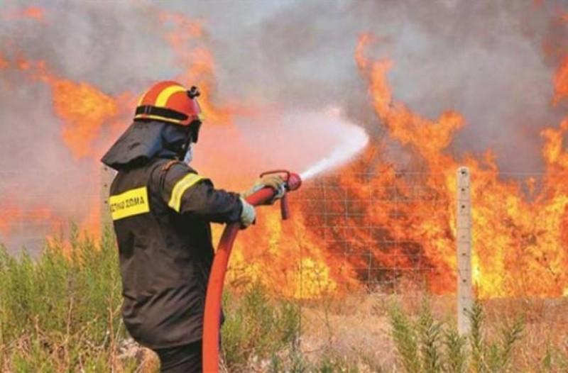 Πυρκαγιά ξέσπασε στη Μεσσηνία!
