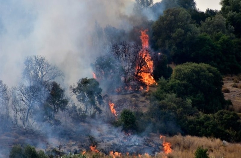 Φωτιά «γίγαντας»: Στα 11,5 χιλιόμετρα το μέτωπο της πυρκαγιάς στην Εύβοια!