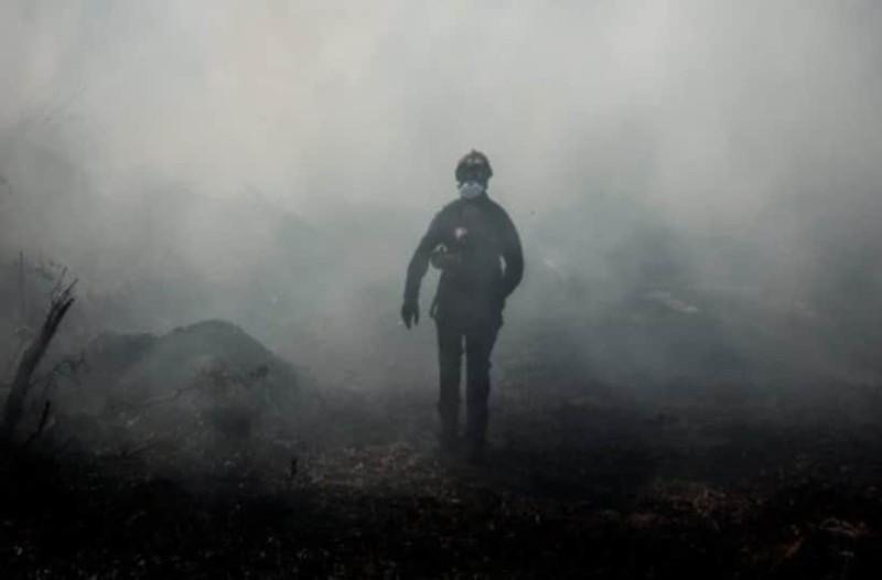 Φωτιά στην Εύβοια:  Όλα «δείχνουν» εμπρησμό! Οι ύποπτοι και τα σενάρια που εξετάζονται (photos-video)