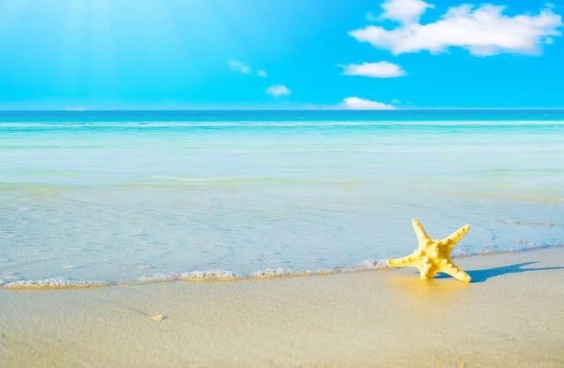 Ζώδια: Τι λένε τα άστρα για σήμερα, Παρασκευή 2 Αυγούστου;
