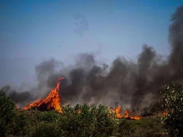 Ελαφόνησος: Σκληρή μάχη με τις φλόγες! Εκκενώνεται το κάμπινγκ και ο οικισμός Παναγιά !