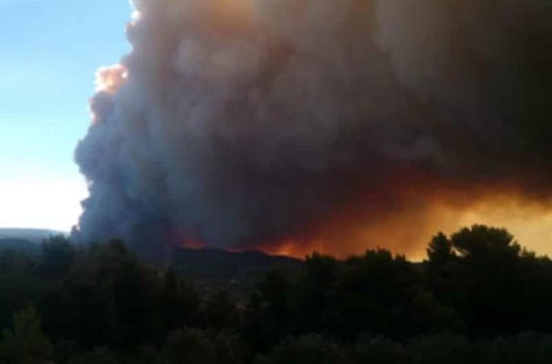 Φωτιά στην Εύβοια: Συνεχείς οι αναζωπυρώσεις! Οι πυροσβέστες δίνουν μάχη!