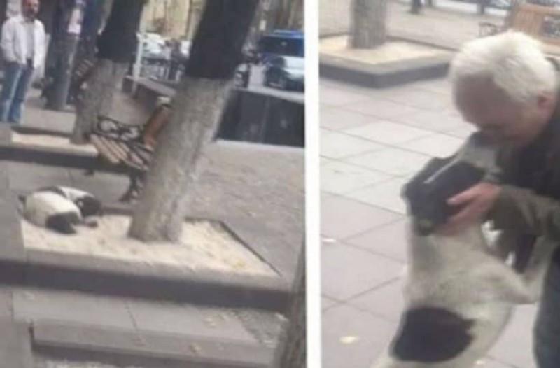 Η στιγμή που ένας 62χρονος άντρας βρίσκει στο δρόμο τον επί τρία χρόνια χαμένο σκύλο του!