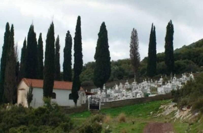 Tο γνώριζες; Γι αυτό το λόγο φυτεύουν κυπαρίσσια στα νεκροταφεία!