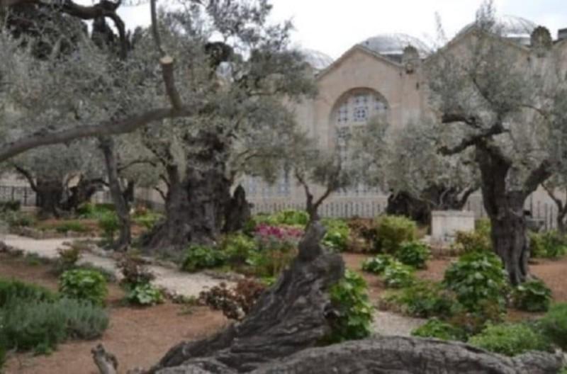 Ο τόπος στον οποίο έκανε ο Ιησούς και την τελευταία προσευχή πριν τη Σταύρωση!