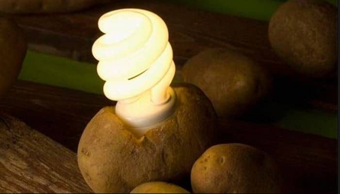 Φοβερό κόλπο: Δείτε πως με μία μόνο πατάτα θα έχετε δωρεάν φως στο δωμάτιο σας, για πάνω από 1 μήνα! (video)
