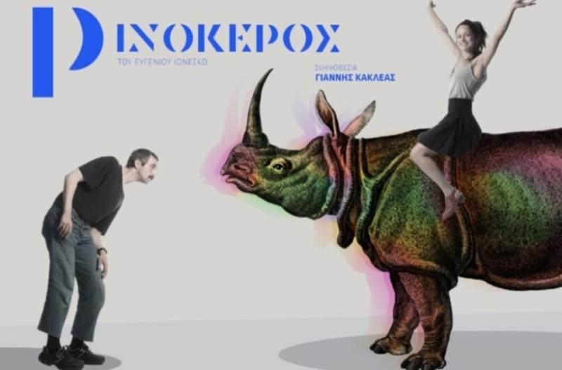 Ο Ρινόκερος του Ινονέσκο στο θέατρο Κιβωτός!