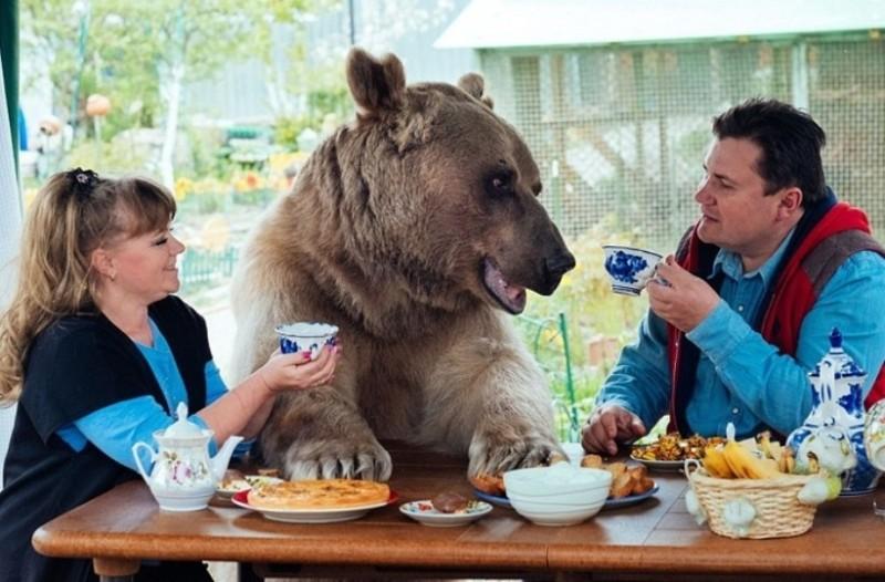Ζευγάρι Ρώσων ζει εδώ και 23 χρόνια με μια αρκούδα!