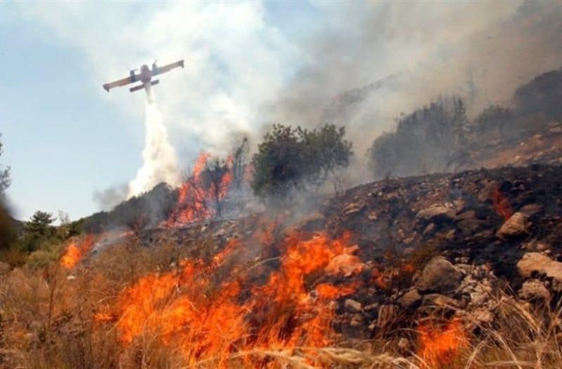 Φωτιά μαίνεται σε δασική περιοχή της Λακωνίας!