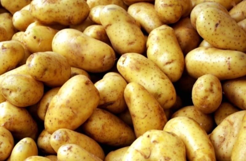 Δίαιτα της πατάτας: Χάσε 3-5 κιλά σε τρεις μέρες!
