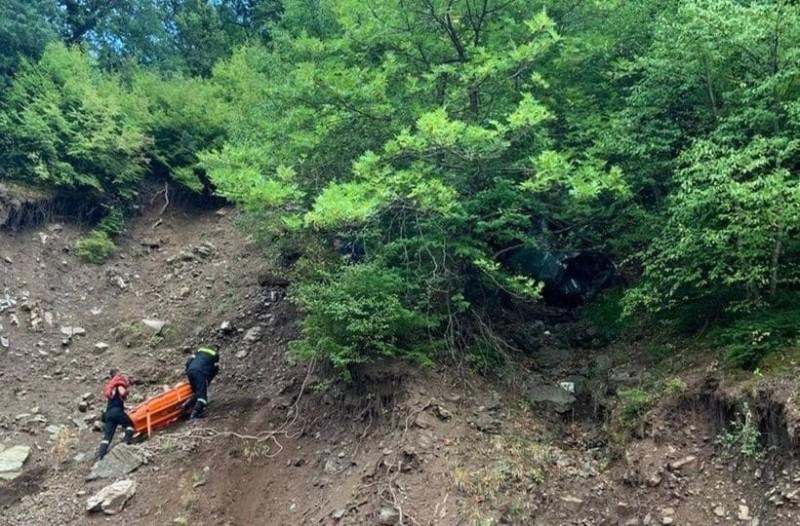 Τραγωδία στην Καρδίτσα: Νεκρά δυο αδέρφια!  Έπεσαν σε γκρεμό με το αυτοκίνητο! (photos-video)