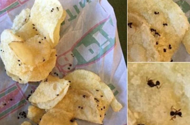 Φαίνονται πατατάκια με πιπέρι αλλά αν κοιτάξεις προσεκτικά... θα αηδιάσεις!