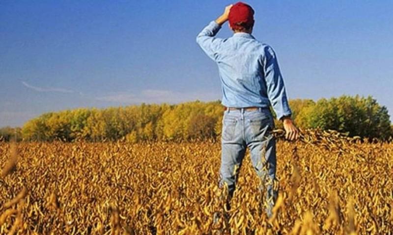 Ανέκδοτο αγρότης