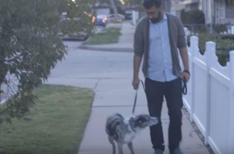 Υιοθέτησε έναν ηλικιωμένο σκύλο μια μέρα σταματάει απότομα την βόλτα τους και...