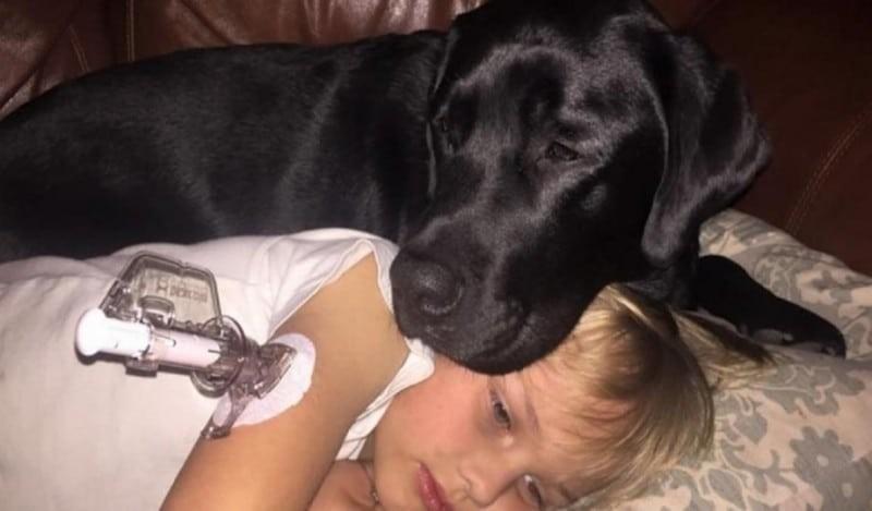 Εκείνο το βράδυ ο σκύλος της ήταν ανήσυχος - Όταν πήγε να δει τον γιο της τρομοκρατήθηκε!