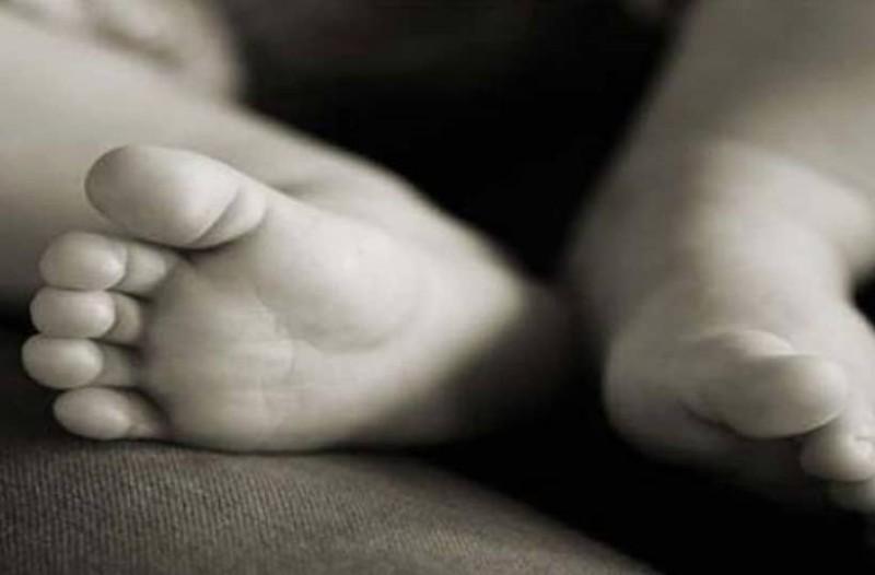 Τραγικός θάνατος για 4 μηνών μωρό: Μαϊμού έριξε πέτρα στο κεφάλι του!
