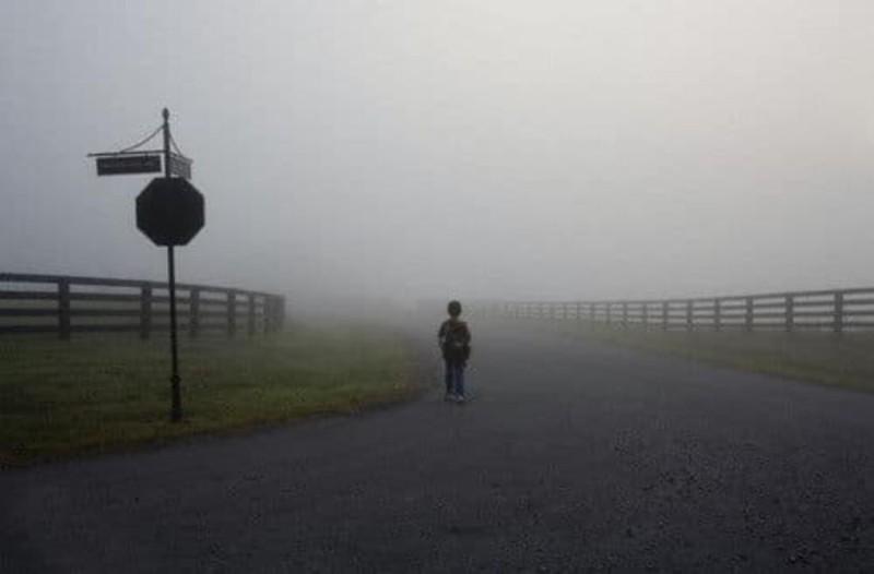 Μεσσηνία: Εξελίξεις με το παιδί που περπατούσε ολομόναχο στα αίματα! Τι συνέβη;