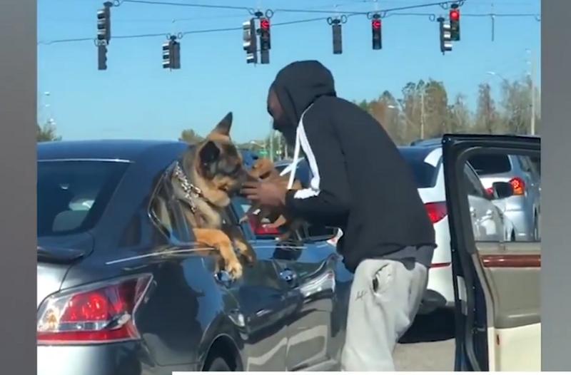 Επικό: Δείτε τι απίστευτο κάνει αυτός ο οδηγός με τον σκύλο του στο διπλανό αμάξι!