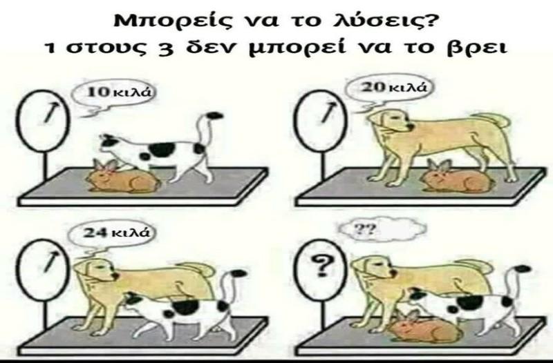 Η σπαζοκεφαλιά με τη γάτα, το σκύλο και το κουνέλι που έχει τρελάνει το διαδίκτυο! (photo)