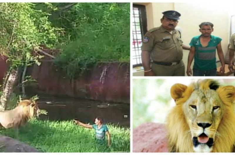 Μεθυσμένος άνδρας μπήκε στο κλουβί με τα λιοντάρια. Στη συνέχεια γίνεται το απίστευτο...