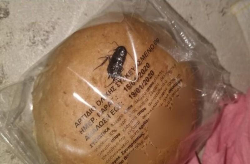 Άνω Λιόσια: Μητέρα μαθητή καταγγέλλει ότι βρέθηκε κατσαρίδα σε ψωμί σε Δημοτικό!