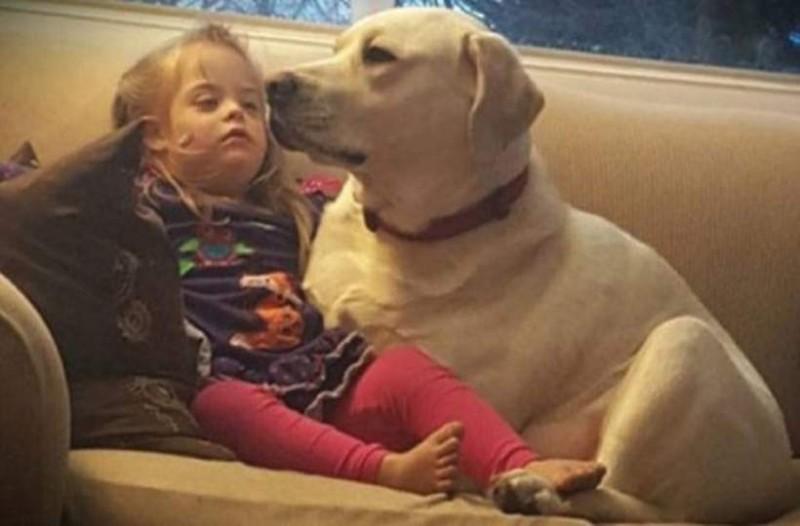Όταν ο σκύλος τους το έκανε αυτό έμειναν έκπληκτοι. Σήμερα το αποκαλούν θεϊκή παρέμβαση!