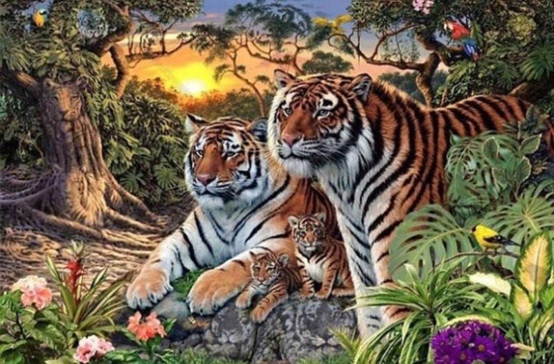 Το 99% των ανθρώπων δεν μπορούν να δουν τις 16 τίγρεις που βρίσκονται στην φωτογραφία! Εσύ;