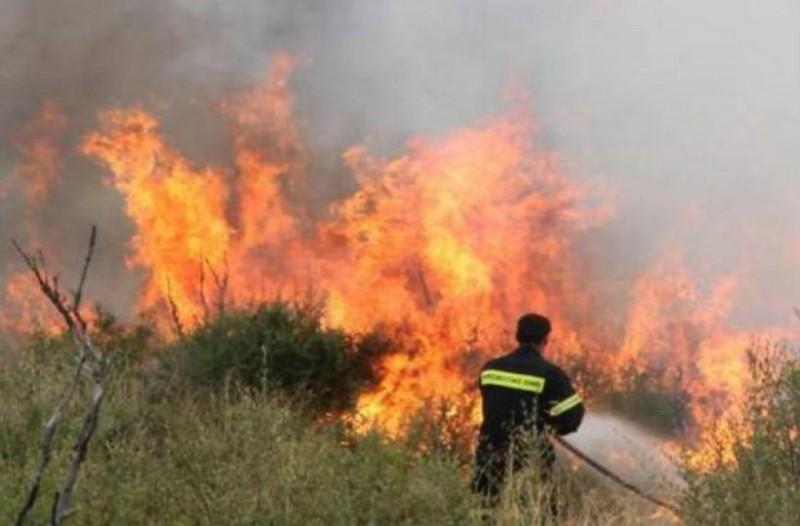 Μεγάλη πυρκαγιά στην Αργολίδα! Ένας πυροσβέστης τραυματίας!