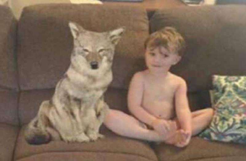 Έστειλε στον μπαμπά φωτογραφία του νέου σκύλου τους δίπλα στον γιο τους...Μόλις την κοίταξε καλύτερα πανικοβλήθηκε!