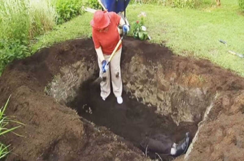 Μία γιαγιά σκάβει έναν τάφο στην αυλή της -  Μετά από λίγο οι γείτονες καταλαβαίνουν τι τρέχει και παθαίνουν σοκ!