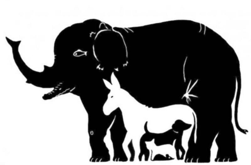 99% των ανθρώπων δεν μπορεί να βρει τα 16 ζώα της φωτογραφίας - Εσύ μπορείς;