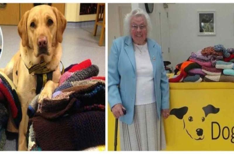 Άξια θαυμασμού: Η 90χρονη γιαγιά που έφτιαξε 450 κουβέρτες για τα αδέσποτα σκυλιά