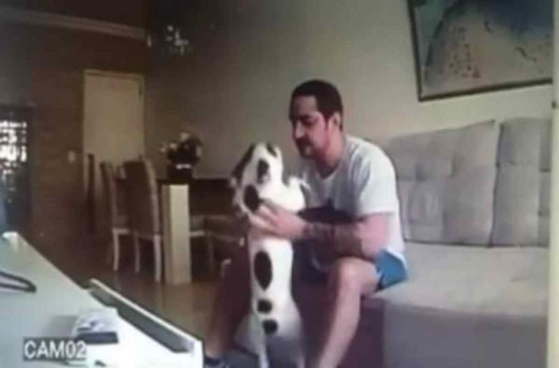 Ήταν έτοιμη να τον παντρευτεί - Όταν είδε σε κρυφή κάμερα τα βασανιστήρια που έκανε στον σκύλο της όμως... έκανε κάτι που θα σας κάνει να δακρύσετε!