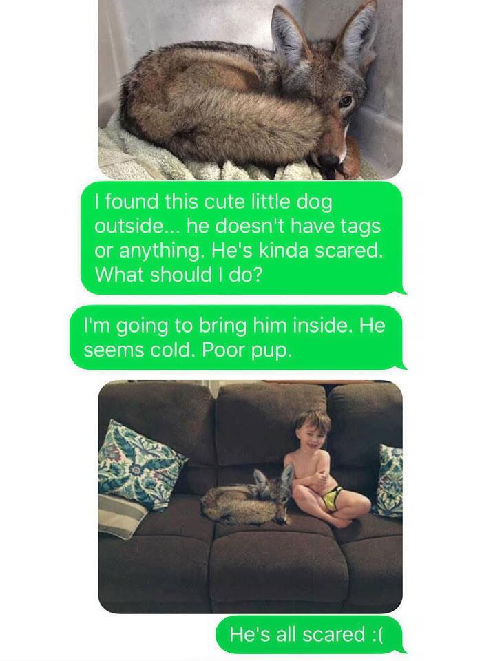 έστειλε τον γιο της φωτογραφία με έναν σκύλο
