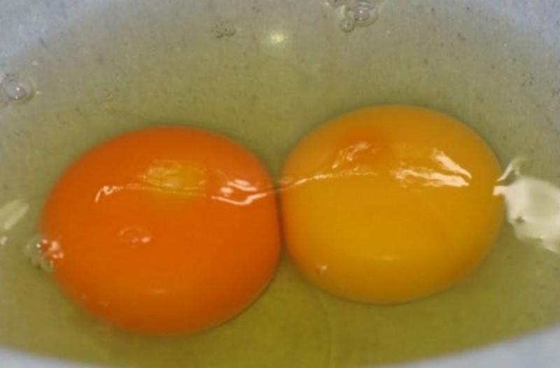 Ο κρόκος ενός αυγού είναι κίτρινος ή πορτοκαλί - Τι σημαίνει και ποιος είναι ο πιο υγιεινός