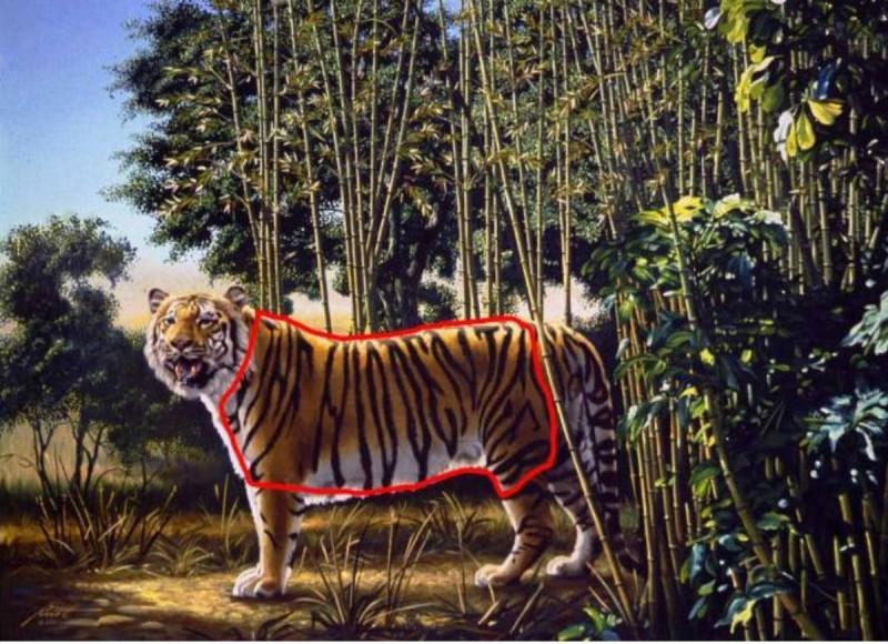κουίζ ζώων