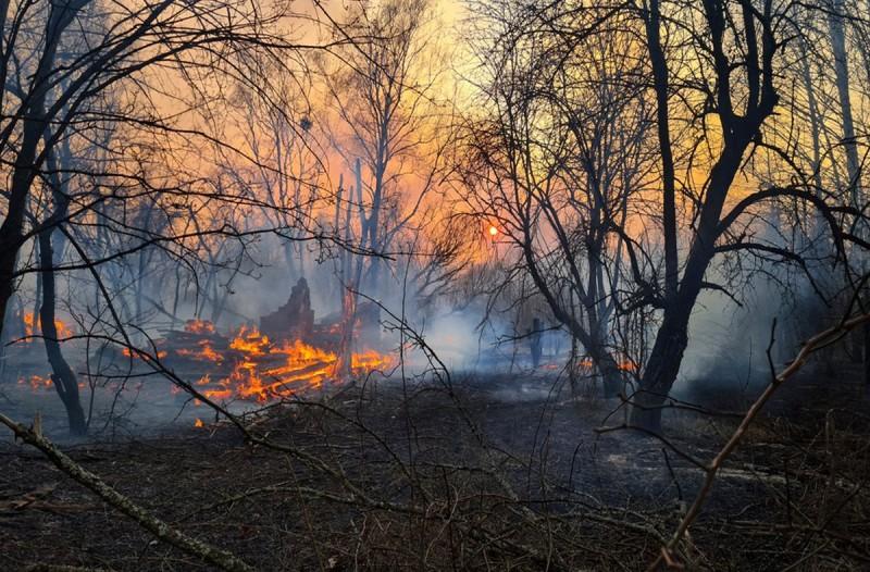 Ο εφιάλτης επέστρεψε: Αύξηση των επιπέδων ραδιενέργειας από τη φωτιά στο Τσερνόμπιλ (video)