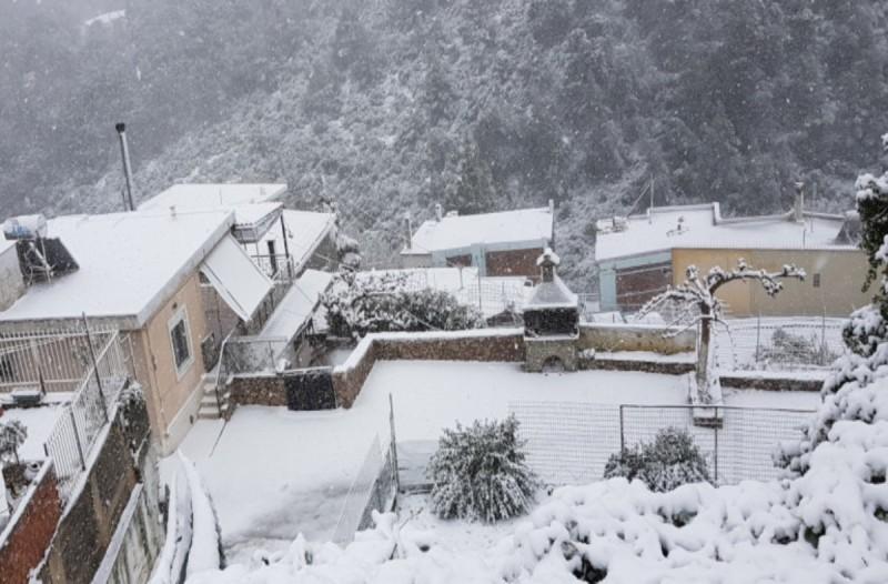 Χιόνισε σε Δ.Φθιώτιδα και Ευρυτανία - Πάνω από 30 εκατοστά το χιόνι!