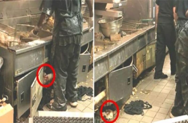 Έβαλαν κρυφή κάμερα στην κουζίνα γνωστού εστιατορίου - Θα αηδιάσετε με αυτό που θα δείτε