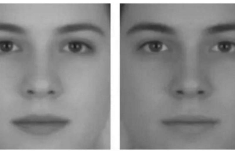 Η φωτογραφία που σαρώνει το διαδίκτυο - Ποιο πρόσωπο είναι ο άνδρας και ποιο η γυναίκα; Μην βιαστείτε να απαντήσετε