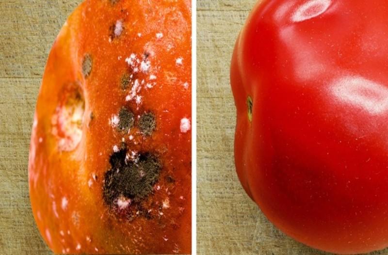 Αυτό θα συμβεί όταν βάλετε τις ντομάτες στο ψυγείο - Μπορεί να...