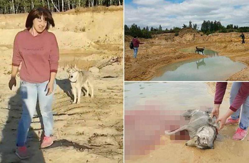 Κτηνωδία: Έβγαλε έξω το σκύλο της για βόλτα και τον πυροβόλησαν εν ψυχρώ (Video)