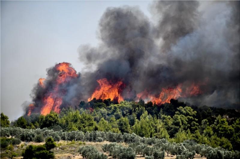 Φωτιά στην Κορινθία: Τρίτη μέρα θρίλερ - Αισιοδοξία από την πτώση των ανέμων