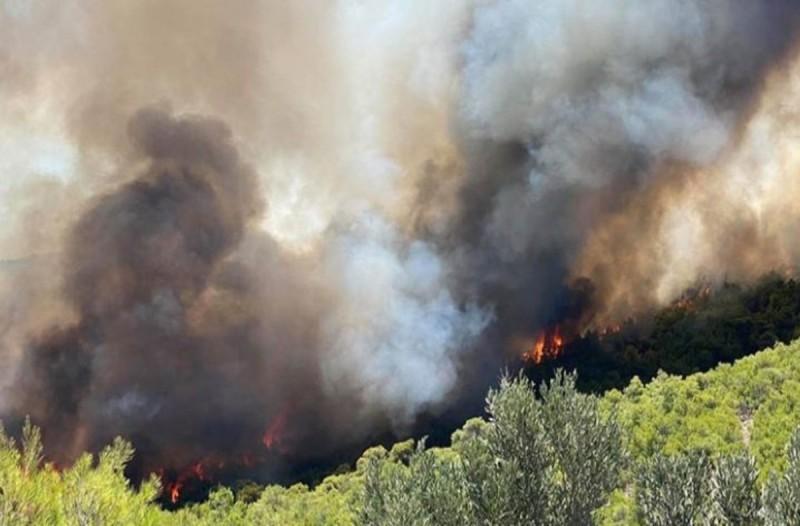 Μαίνεται η φωτιά στη Λέσβο - Ολονύχτια μάχη με τις φλόγες